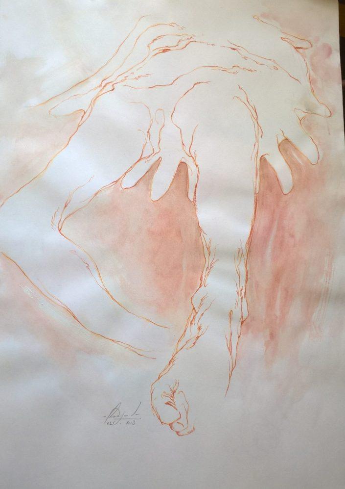 Anatomie (série)